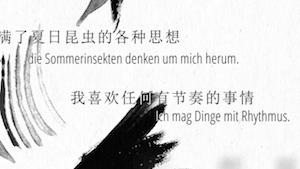Zang Di, screenshot
